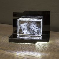 Premium Beleuchtungselement Opera - Aria (für Prisma...